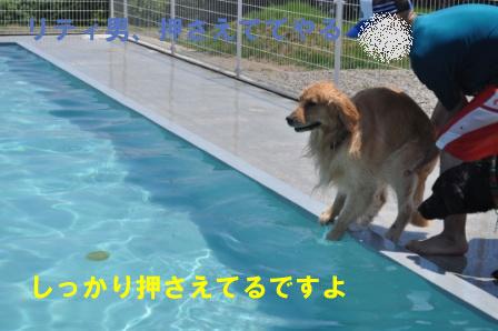 f0176830_17552092.jpg