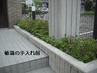 f0031037_21444159.jpg