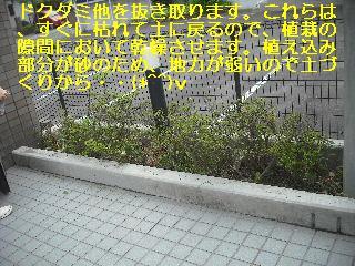 f0031037_2145030.jpg