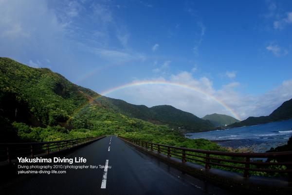 二重の虹!! _b0186442_19253391.jpg