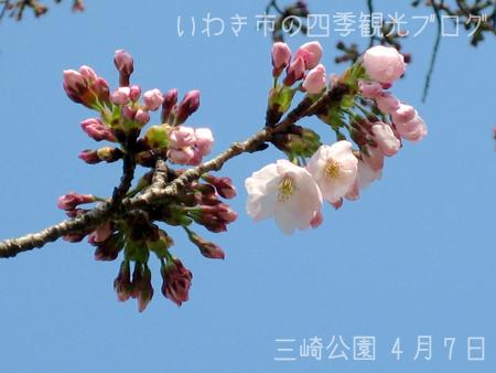 f0105342_13271976.jpg