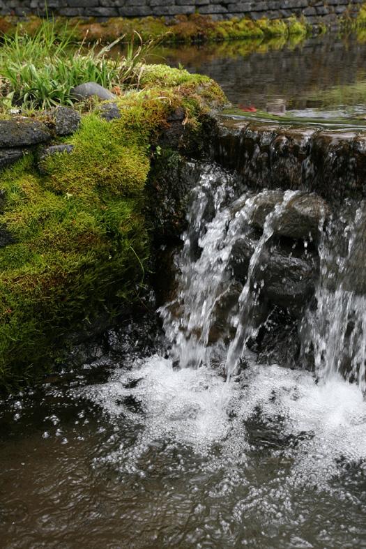 軽井沢 星のや 4 水辺の楽しさ_e0127948_1904515.jpg