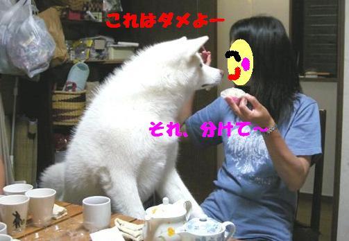 f0121712_15595212.jpg