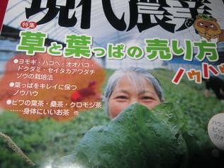 おいらの「愛読書」~~_a0125419_11344026.jpg