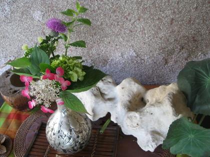 ココロに~「花」を~~_a0125419_12122049.jpg