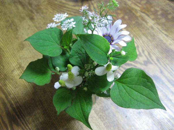 ココロに~「花」を~~_a0125419_1213052.jpg