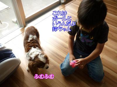 b0185323_0244475.jpg