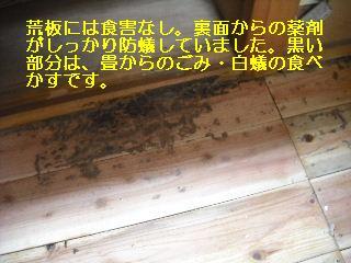 f0031037_1758739.jpg