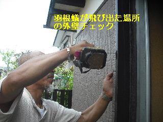 f0031037_1759911.jpg