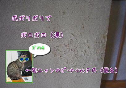 d0139352_085553.jpg