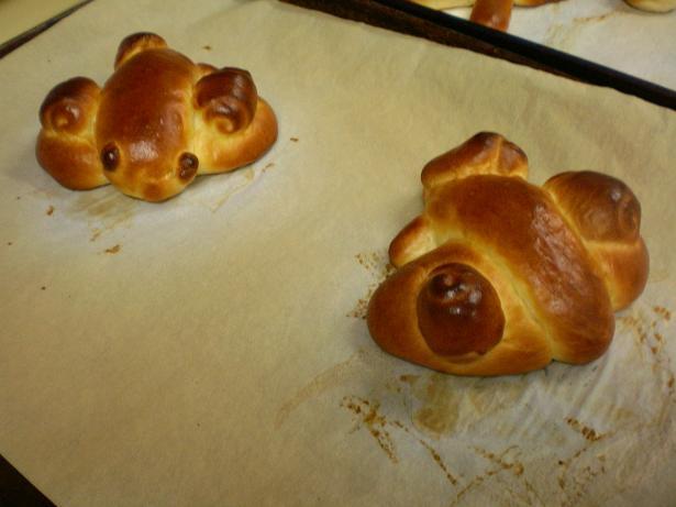 パン作り体験教室好評でした_c0172969_21514268.jpg