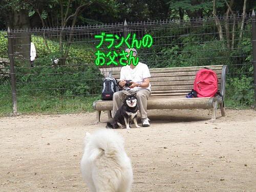f0111475_16141282.jpg