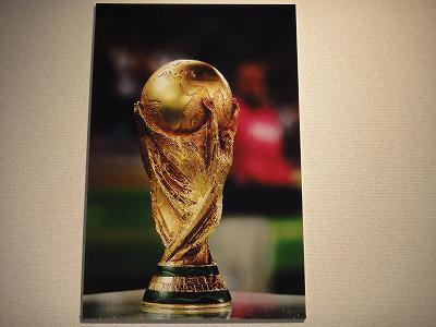 「日本代表・夢(ワールドカップ)追い人」パネル展開場式_f0019487_4165965.jpg