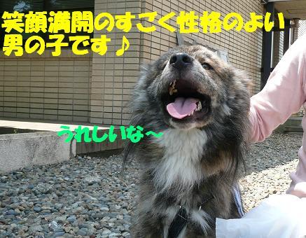 f0121712_9162145.jpg
