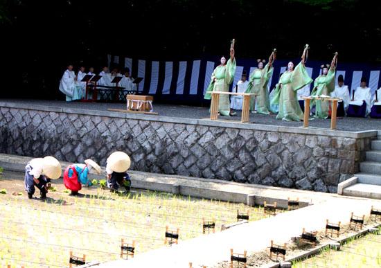 伏見大社 田植祭_e0048413_1550887.jpg