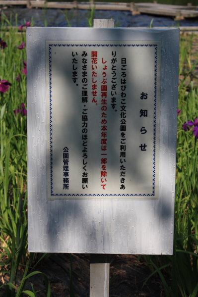 b0055171_16251025.jpg
