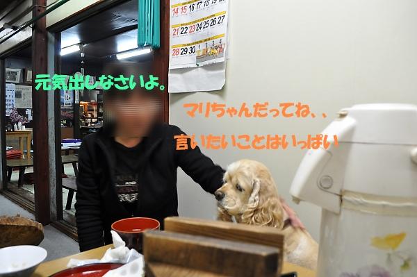 b0067012_134889.jpg