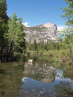 水と緑の癒し Yosemite National Park_b0180714_536344.jpg