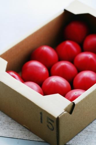 静岡・メロンのトマト_b0048834_827146.jpg