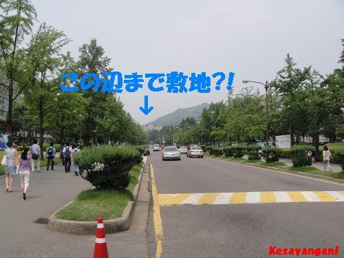 b0070154_14545397.jpg
