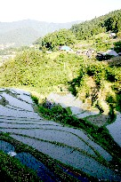 下影の棚田、2戸の農家が守る山奥の棚田 (徳島)_b0067283_13263735.jpg