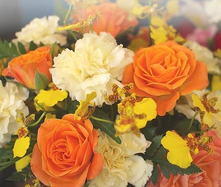 【季節のたより】 父の日にバラを!_b0151490_2321160.jpg