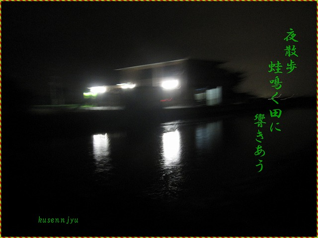 a0137997_231433.jpg
