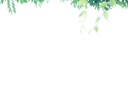 b0139407_19202737.jpg