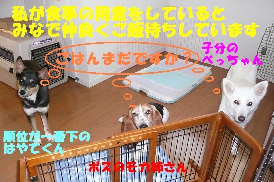 f0121712_23531418.jpg