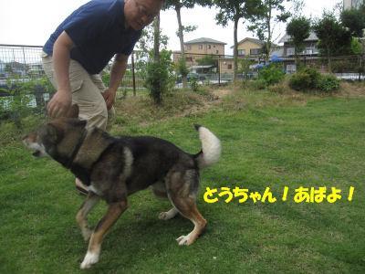 f0143123_2011670.jpg