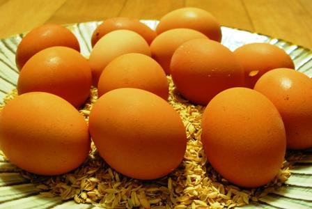 黒木自然農園の美しい卵_c0156749_1426342.jpg