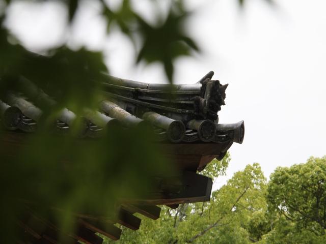 太宰府天満宮 六月の神事ひとつ_b0124456_15335115.jpg