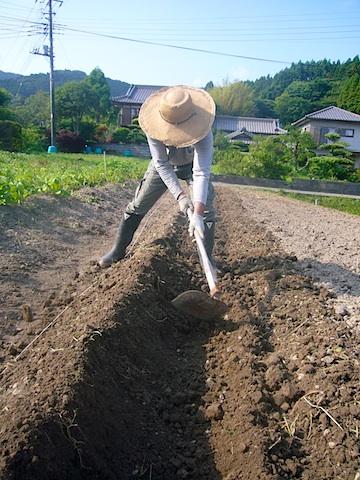 f0141559_21109.jpg