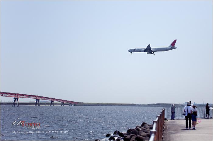 旅客機_f0073776_11385014.jpg