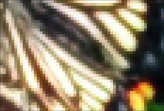 c0229485_1701725.jpg