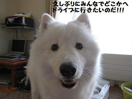 f0212597_910209.jpg