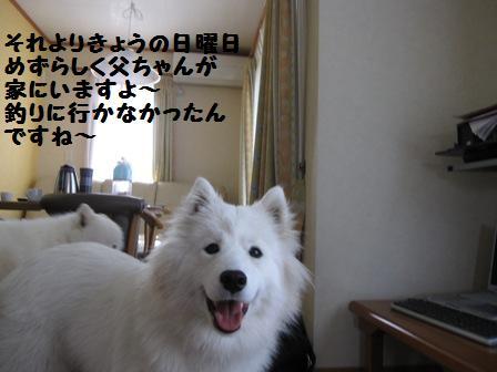 f0212597_91092.jpg