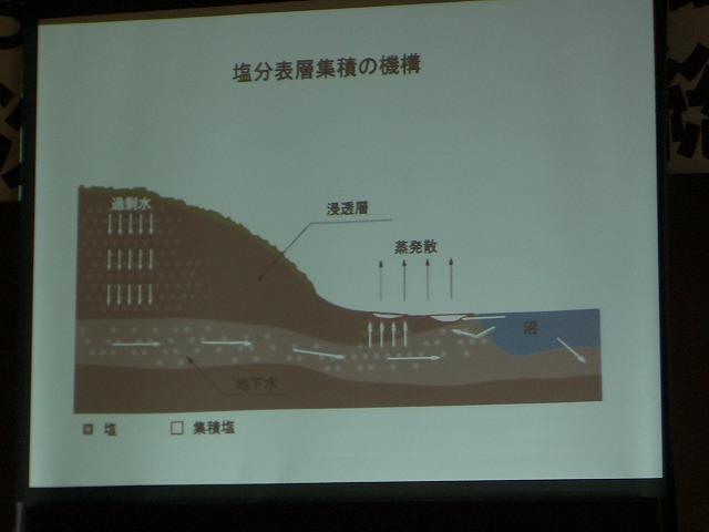 富士市STOP温暖化地域協議会と「遺伝子組換え」_f0141310_2311115.jpg