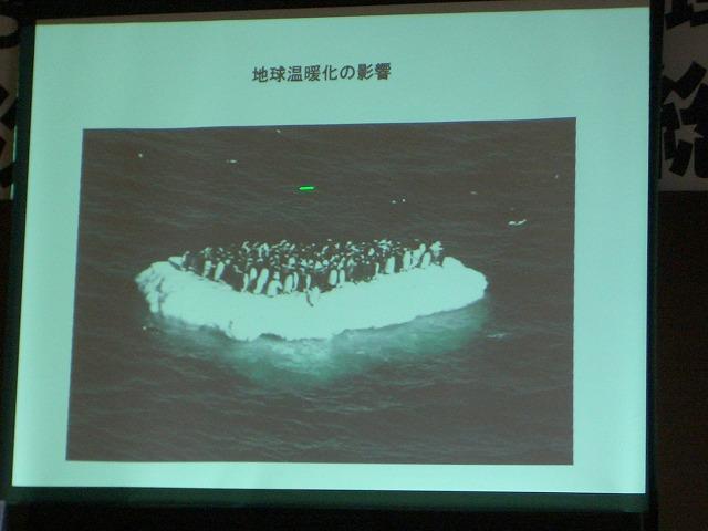 富士市STOP温暖化地域協議会と「遺伝子組換え」_f0141310_2313577.jpg
