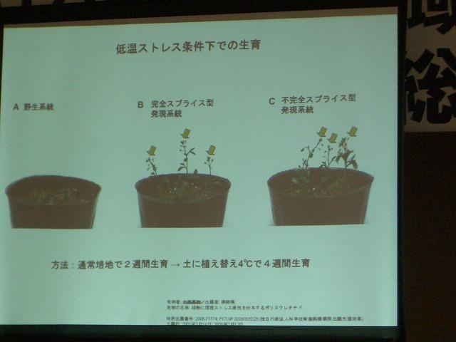 富士市STOP温暖化地域協議会と「遺伝子組換え」_f0141310_232594.jpg
