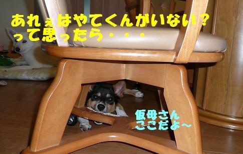 f0121712_9451232.jpg