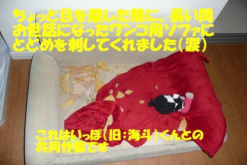 f0121712_9452661.jpg