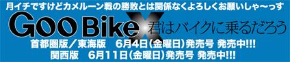 DAMISCH 陽 & kawasaki ZEPHYR750RS(2010 0517)_f0203027_9175790.jpg