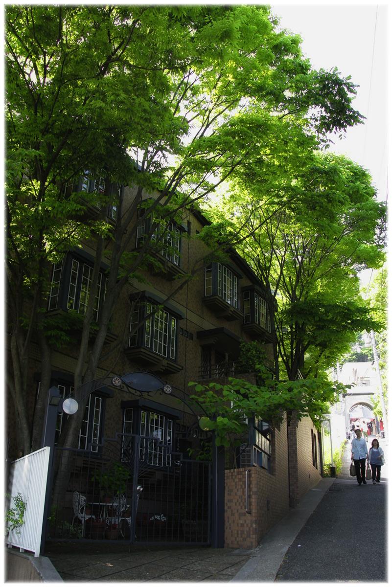 昔からある場所 神戸 _f0021869_23294674.jpg