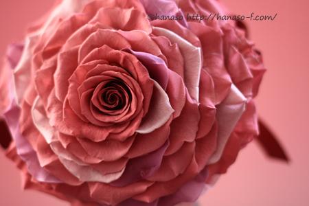 大人ピンクのメリアブーケ_c0198981_22175122.jpg