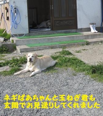 f0212597_1420661.jpg