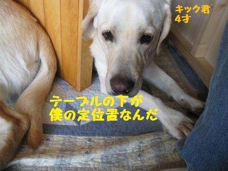 f0212597_14641.jpg