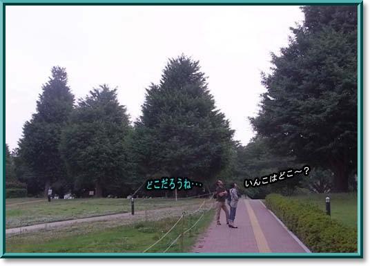 c0133013_13371492.jpg