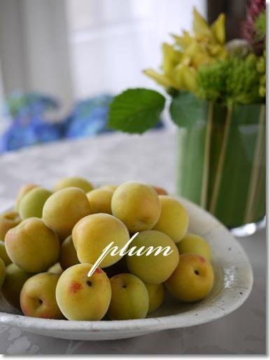 いい香りの梅たち_d0133320_22443758.jpg