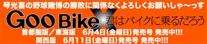 遠藤 栄次郎 & Herley-Davidson FLH(2010 0522)_f0203027_103426.jpg